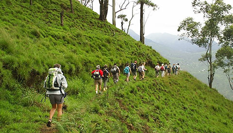 Best travel experiences in Sri Lanka, Best things to do in Sri Lanka, Top tourist attractions in Sri Lanka