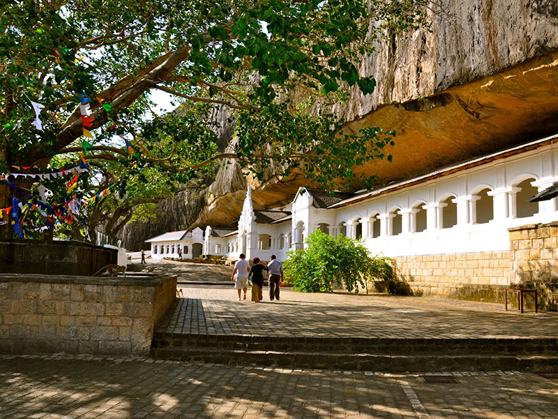 Day tours to Sigiriya from Colombo - Colombo Sigiriya day tours - Sigiriya day trip from Colombo - Sigiriya Dambulla day tours - Excursions to Sigiriya and Dambulla from Colombo - Sigiriya Excursions - Dambulla Excursions - Sigiriya Colombo day excursions