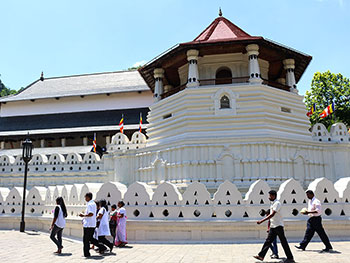 Kandy Day Tours from Colombo - Day tours to Kandy - Day trip to Kandy from Colombo - Pinnawala Elephant Orphanage day tours from Colombo -  Pinnawala Day Tours - Kandy Pinnawala Day Tours fro Colombo - Kandy Temple of Tooth Relic day trip from Colombo