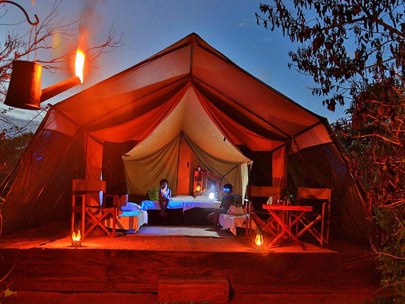 Wildlife Safari Hotels in Sri Lanka Safari Hotels in Sri Lanka Tenetd Safari C&s & Tented Safari Camps in Sri Lanka | Wildlife Safari Hotels in Sri ...