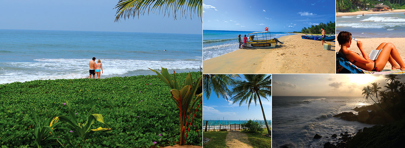 Sri Lanka Beach Holidays Hotels In All Inclusive Hotel Offers
