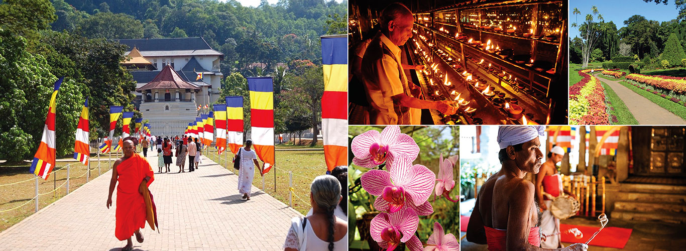 Sri Lanka Kandy Day Tours from Colombo | Day Tours in Kandy